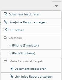 onpage.org Weitere Optionen Pfeil