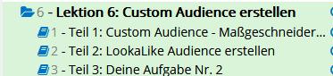 finest academy online kurs custom audience